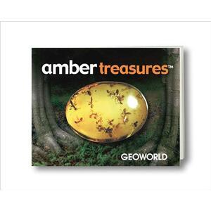 Kit Amber Treasures - 4