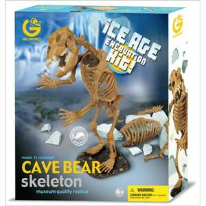 Cave Bear Skeleton - 3