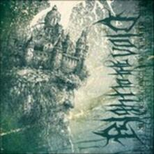 Kingdom of Vanity - CD Audio di Right to the Void