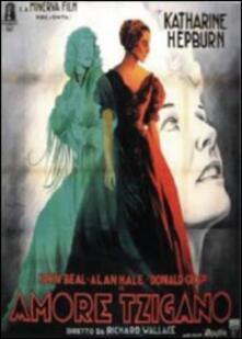 Amore tzigano di Richard Wallace - DVD