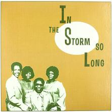 In the Storm So Long - Vinile LP