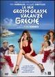 Cover Dvd DVD Le mie grosse grasse vacanze greche