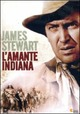 Cover Dvd L'amante indiana