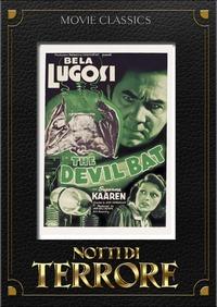 Cover Dvd Notti di terrore (DVD)