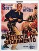 Cover Dvd La meticcia di sacramento