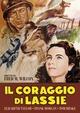 Cover Dvd DVD Il coraggio di Lassie