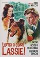 Cover Dvd Torna a casa, Lassie!