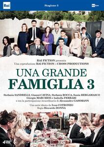 Una Grande Famiglia Stagione 3 (4 DVD) di Riccardo Milani - DVD