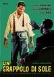 Cover Dvd Un grappolo di sole