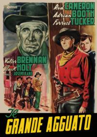Cover Dvd Il grande agguato (DVD)