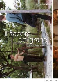 Cover Dvd Il sapore del grano