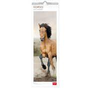 Cartoleria Calendario 2017 Legami. Horses. 16 x 49 cm Legami