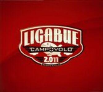Foto Cover di Campovolo 2.011, CD di Ligabue, prodotto da Warner Bros