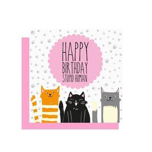 Biglietto Auguri Compleanno Gatti Legami Greeting Card Cats 7x7