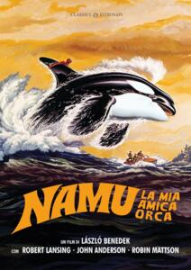 Film Namu, la mia amica orca (DVD) Laszlo Benedek