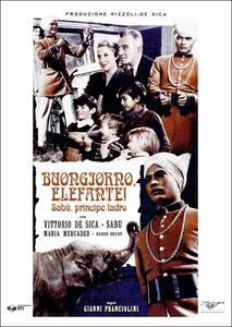 Buongiorno elefante! di Gianni Franciolini - DVD