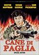 Cover Dvd Cane di paglia