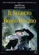 Cover Dvd DVD Il segreto del bosco vecchio