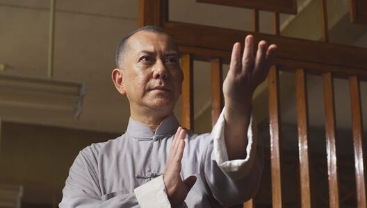 Cofanetto Ip Man (5 Blu-ray) di Herman Yau Lai-to,Wilson Yip - 3
