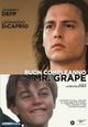 Cover Dvd DVD Buon compleanno Mr. Grape