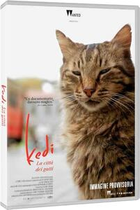 Kedi. La città dei gatti (DVD) di Ceyda Torun - DVD