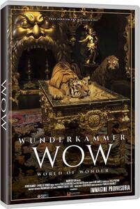 La stanza delle meraviglie (DVD) di Francesco Invernizzi - DVD