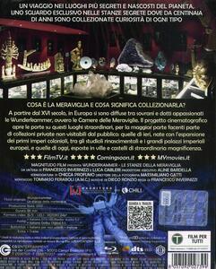 La stanza delle meraviglie (Blu-ray) di Francesco Invernizzi - Blu-ray - 2