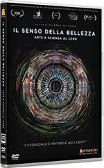 Il senso della bellezza. Arte e scienza al CERN (DVD)
