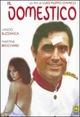 Cover Dvd Il domestico