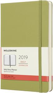 Agenda giornaliera 2019, 12 mesi, Moleskine large copertina rigida. Verde
