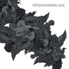 Mitochondrial Sun - Vinile LP di Mitochondrial Sun