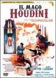 Cover Dvd Il mago Houdini