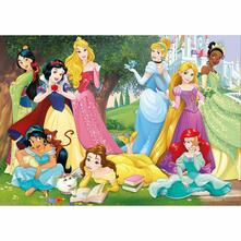 500 Principesse Disney