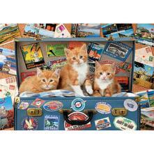 200 Gattini Viaggiatori