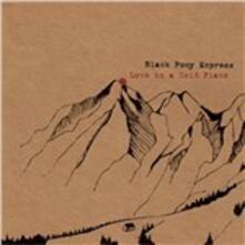 Love in a Cold Place - Vinile LP di Black Pony Express