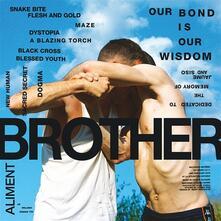 Brother - Vinile LP di Aliment