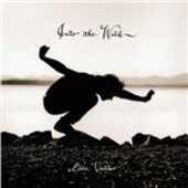 Vinile Into the Wild (Colonna Sonora) Eddie Vedder