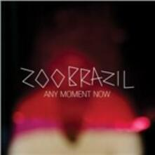 Any Moment Now - CD Audio di Zoo Brasil