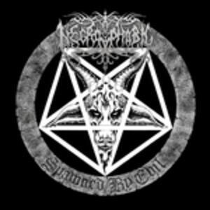 Spawned By Evil - Vinile LP di Necrophobic