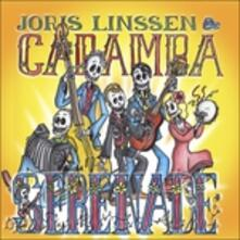 Serenade - CD Audio di Joris Linssen