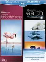 Il mistero dei fenicotteri rosa - Earth, la nostra terra