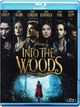 Cover Dvd DVD Into the Woods