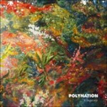 Allogamy - Vinile LP di Polynation