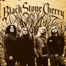 Black Stone Cherry (Limited 180 gr. Gold Coloured Vinyl Edition) - Vinile LP di Black Stone Cherry