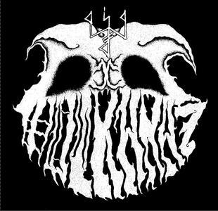 Paralys - Vinile LP di Wulkanaz