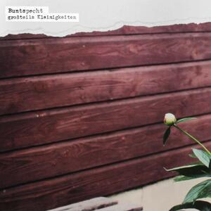 Grossteils Kleinigkeiten - Vinile LP di Buntspecht