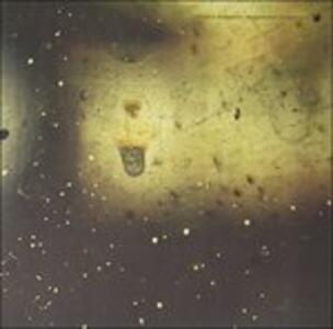 Suspended Cadences - Vinile LP di Robert Hampson