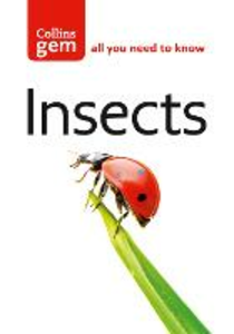 Libro in inglese Insects  - Michael Chinery