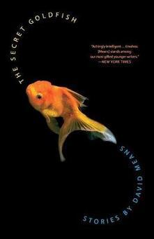 The Secret Goldfish - David Means - cover