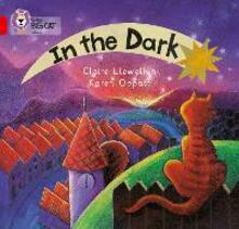 In the Dark: Band 02a/Red a - Claire Llewellyn - cover
